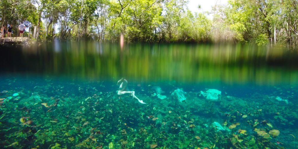 cenote-waterline